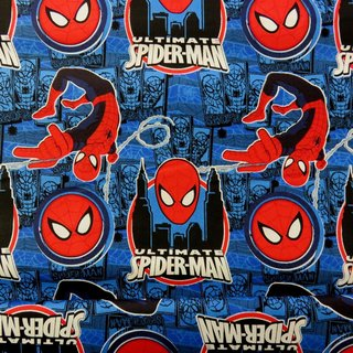Ultimate Spiderman - Amazing Spider-Man