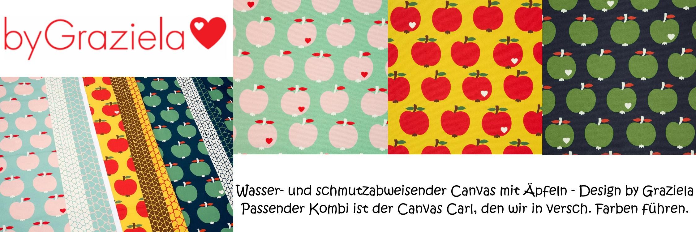 Apfel Canvas von byGraziela - beschichtet als